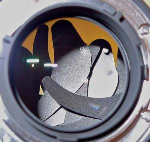 Failed aperture blades on Nikon 24mm f/1.4G