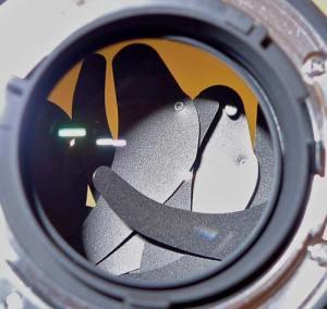 Failed aperture blades on Nikon 24mm f/1.4G
