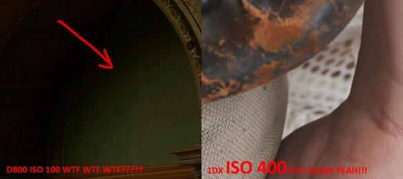 Nikon D800 VS the Canon EOS 1DX Image Quality