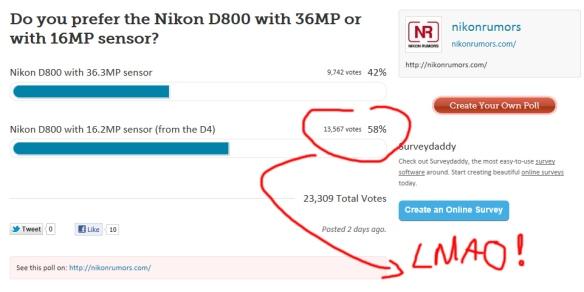 Nikon D800 Poll