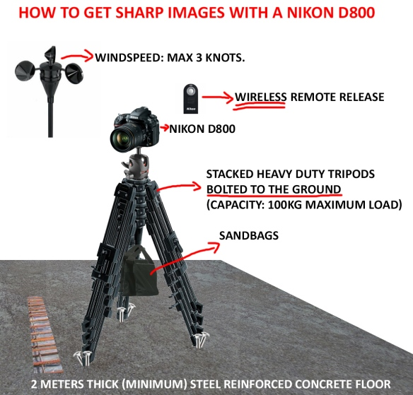 How to get sharp images with a Nikon D800