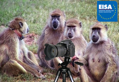 Judges from EISA are seen here testing a Nikon D800 in the field